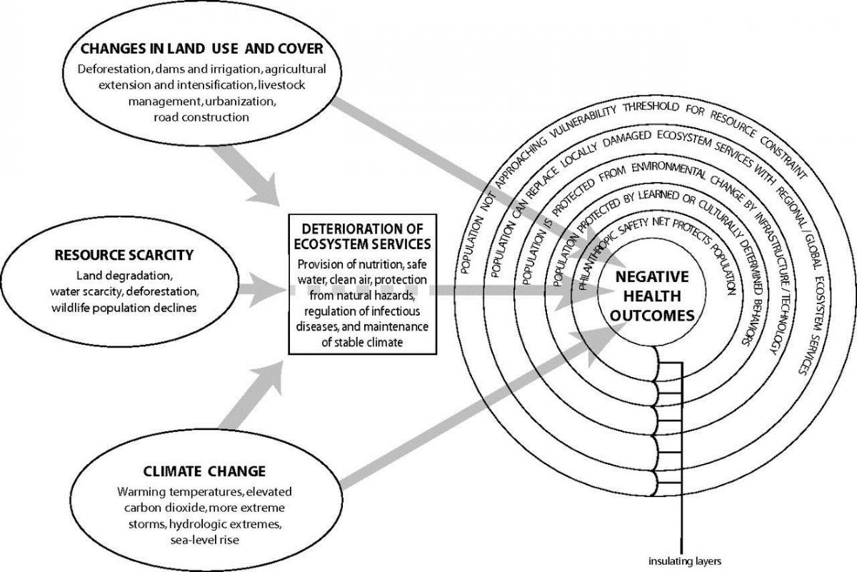 Ecosystem Services And Human Health