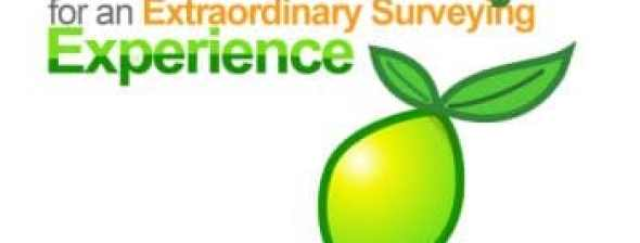 Lime Survey Logo and