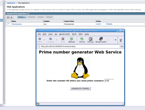 Figure 7: The prime number generator application