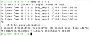 Figure 1: The output of a ping command