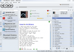 Amarok music player