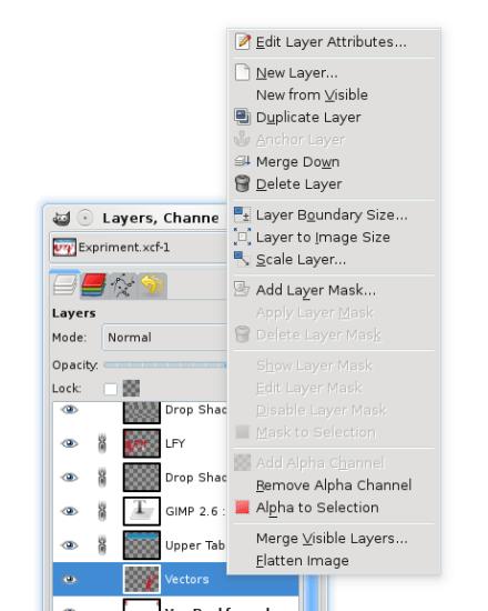 Figure 7: Layer editing options