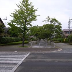 katsura_51