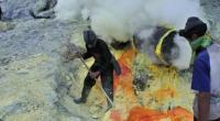 Sull'isola di Java in Indonesia, il vulcano attivo Ijen presenta una grande miniera di zolfo all'interno del suo cratere. Qui da circa 40 anni circa 400 minatori si calano tra i fumi tossici ed estraggono l'elemento dalle lastre delle pareti vulcaniche. Il fotografo Taufan Wijaya li ha immortalati mentre trasportano per più di 9 km carichi di zolfo che arrivano anche al doppio del loro peso corporeo, tra esalazioni tossiche e salite durissime. Tutto per circa 6 euro al giorno. Operai questi minatori sono nostri fratelliche il padrone ha condannato a morte 3 / 11 Facebook Comments