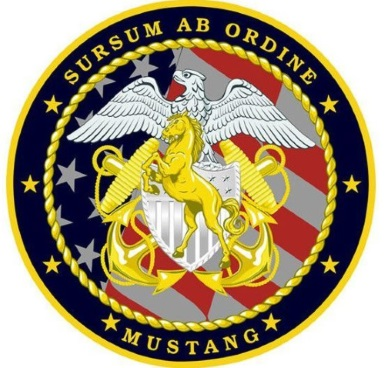 navy mustang patch