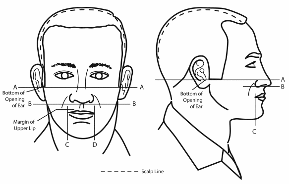 army mustache and sideburns regulations