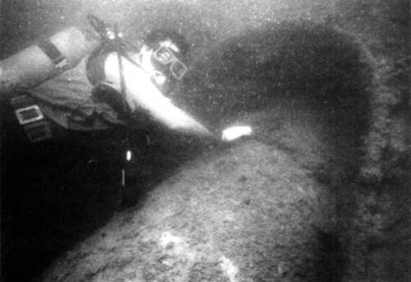 EOD Diver