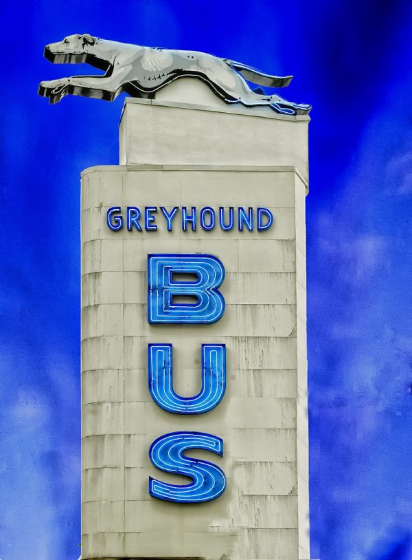 greyhound-bus-394728_1280