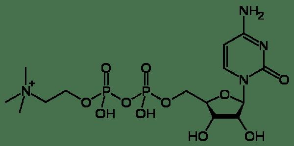 skeletal formula of citicholine - mind lab pro ingredient