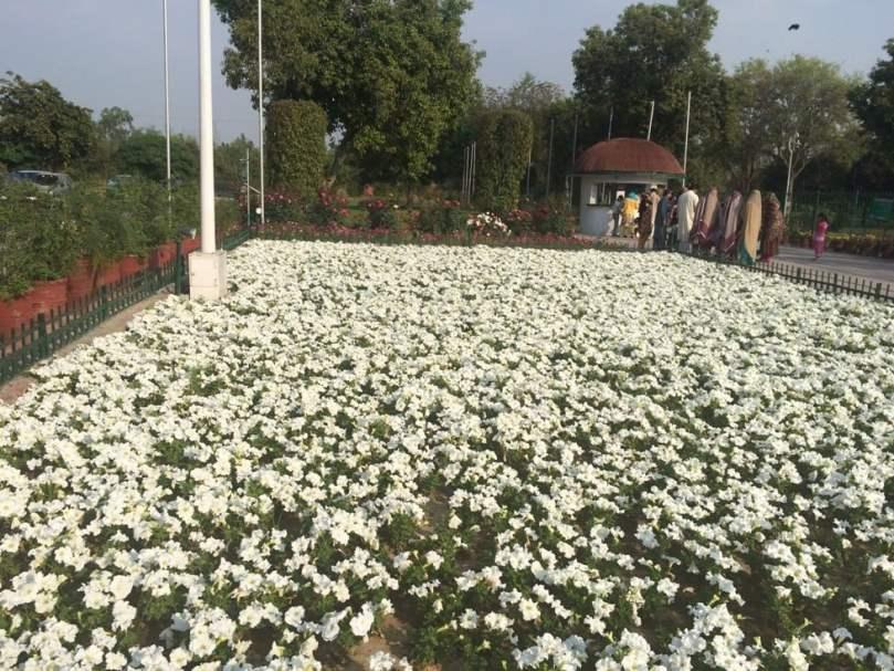 Flower Garden in front of main gate