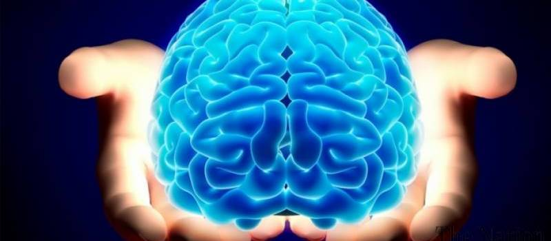 Your brain can eat itself after chronic sleep deprivation