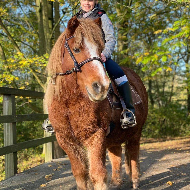 Paardencoaching bij Op Het Terphuis