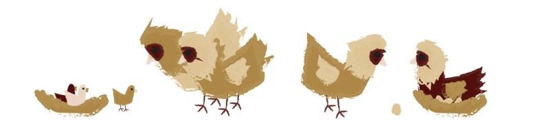 Illustratie Het Terphuis: kippen
