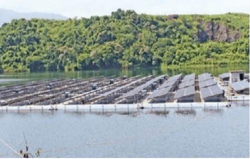 kerala power plant Find here power plants manufacturers, suppliers & exporters in kochi,  विद्युत् संयंत्र विक्रेता, कोच्चि, kerala get contact details &  address of.