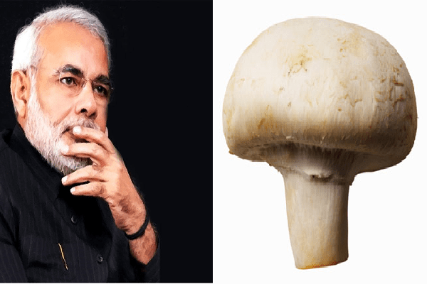 People go crazy after Congress leader claims Modi became fair after eating imported mushrooms