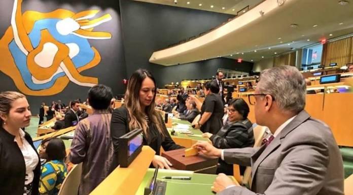 Permanent representative to the United Nations Syed Akbaruddin