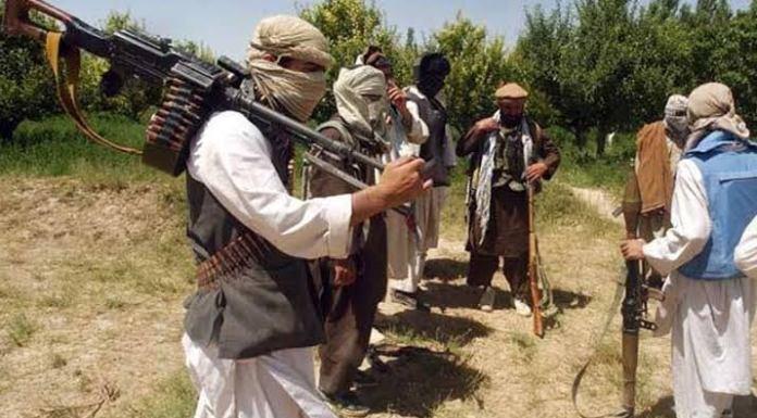 Pakistani Taliban finds its foot again in Pakistan