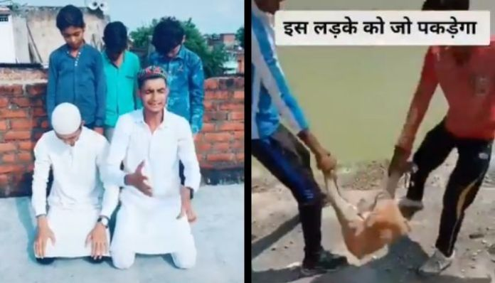 Viral TikTok videos advocate violence against Kaffir, animals and women