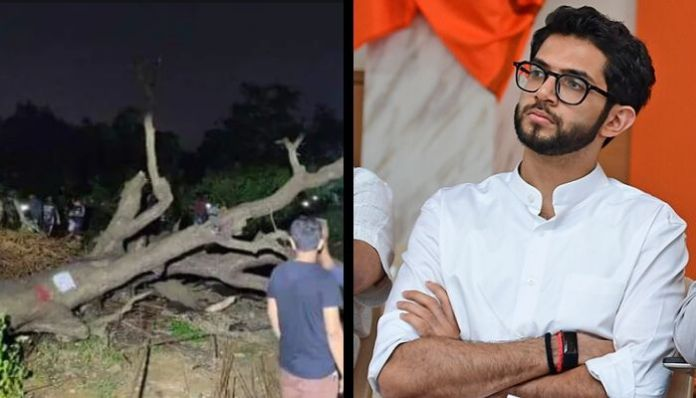 Shiv Sena exposed after BMC hails felling trees for project as inevitable