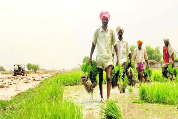 Farmers benefitting from farm laws