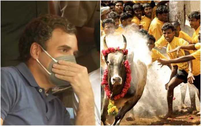 After doing everything possible to ban Jallikattu, Congress now pretending to 'celebrate' it