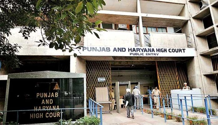 Punjab and Haryana HC refuses anticipatory bail to 95-year-old accused of fraud