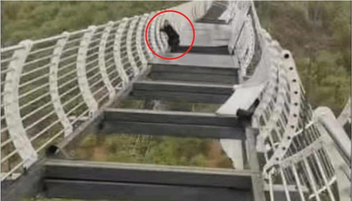Terrifying visual shows man clinging onto a damaged glass bridge in China