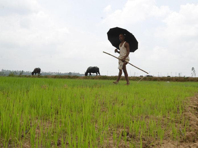 Gujarat govt extends interest waiver on crop loan repayments