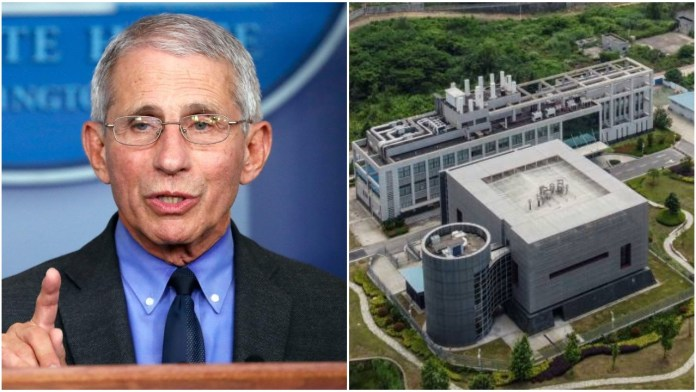 Fauci knew pandemic risks, hid 'gain of function' research from White House: Report