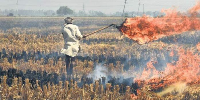 Stubble burning could have caused Covid-19 spike in Delhi during winter, suggests new study
