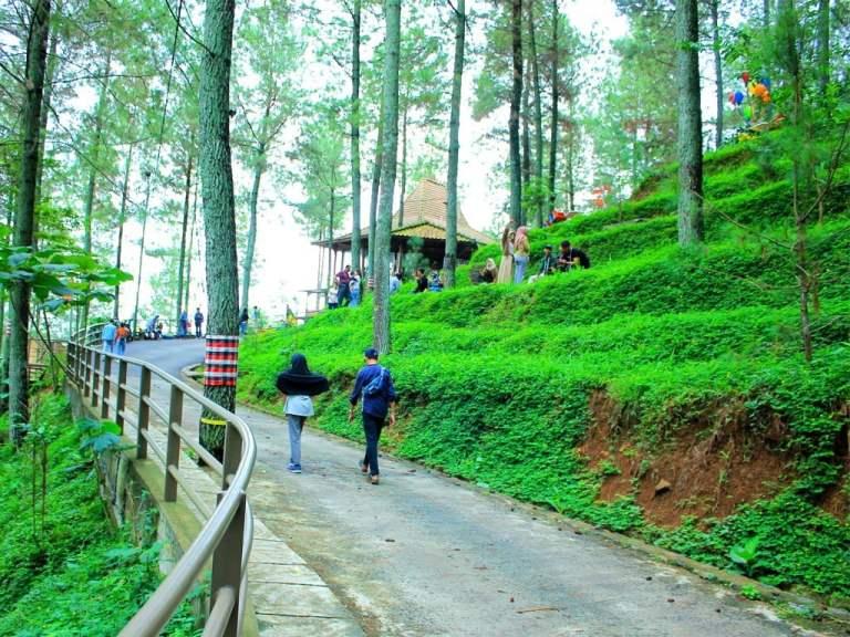 Wisata Alam di Bandung yang Instagrammable