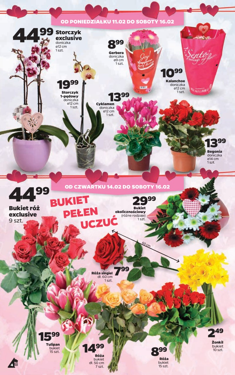 Netto Gazetka 11 02 Luty 2019 Kwiaty