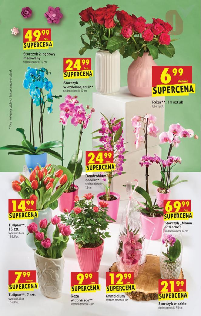 Biedronka 21 05 2020 W Tym Tygodniu Kwiaty