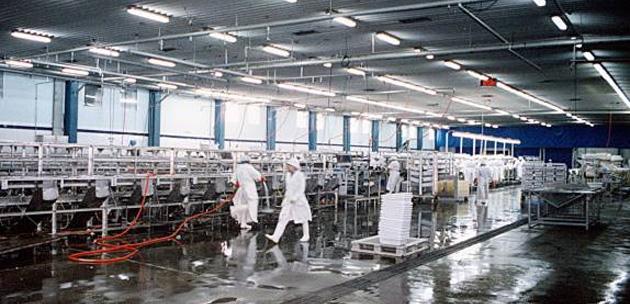 Alpesca SA - planta de procesamiento