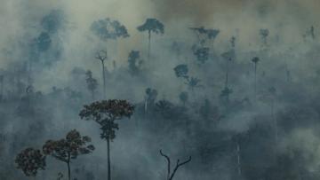 Screenshot_2020-07-16-Governo-proíbe-queimadas-no-Brasil-por-120-dias