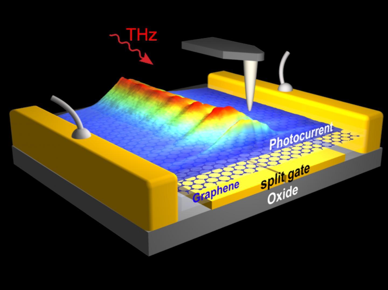 On Chip Observation Of Thz Graphene Plasmons