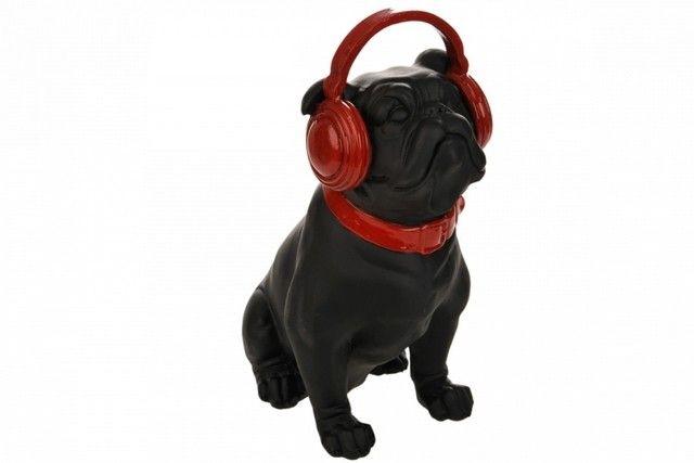 chien musique