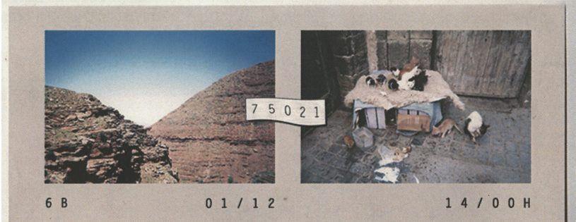 6b-17021