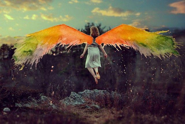 les ailes de pandora