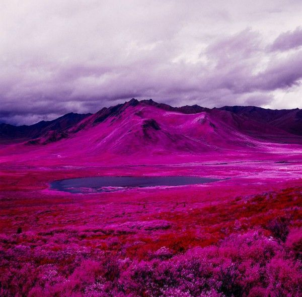 Arctic-Landscape-Transformed-into-Infrared-Paradise-07