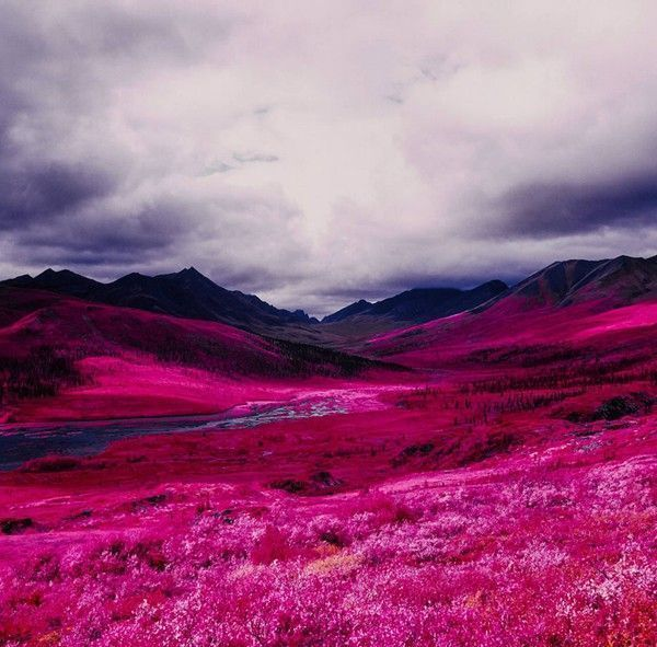 Arctic-Landscape-Transformed-into-Infrared-Paradise