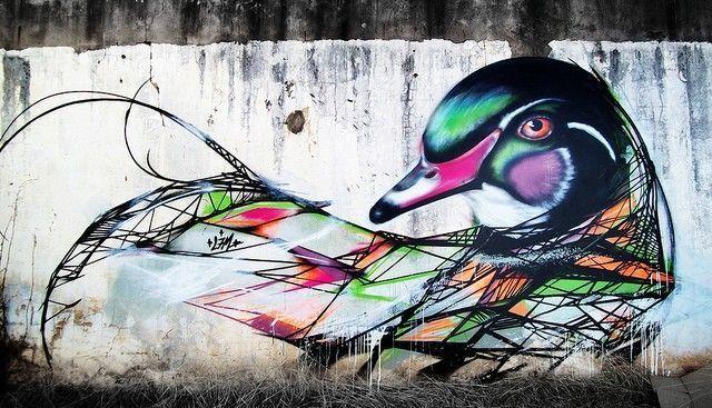 duck l7m
