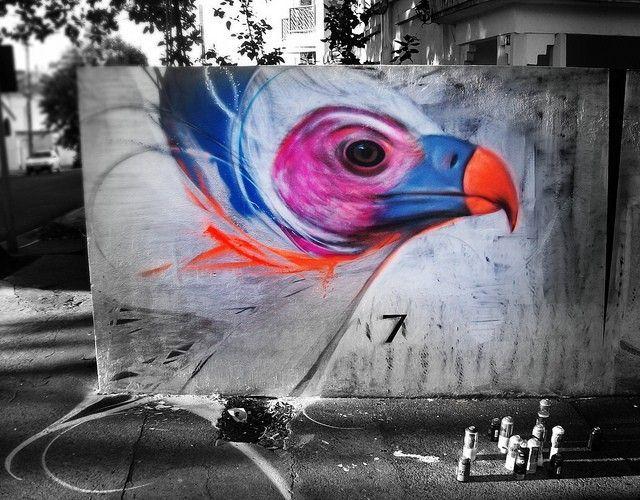 l7m oiseaux