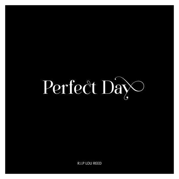 typo-perfect-day