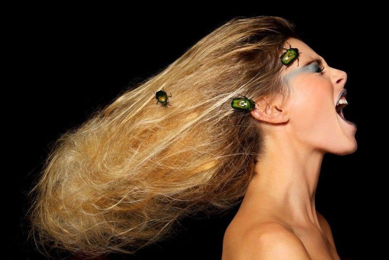 scarabé-crie-couv