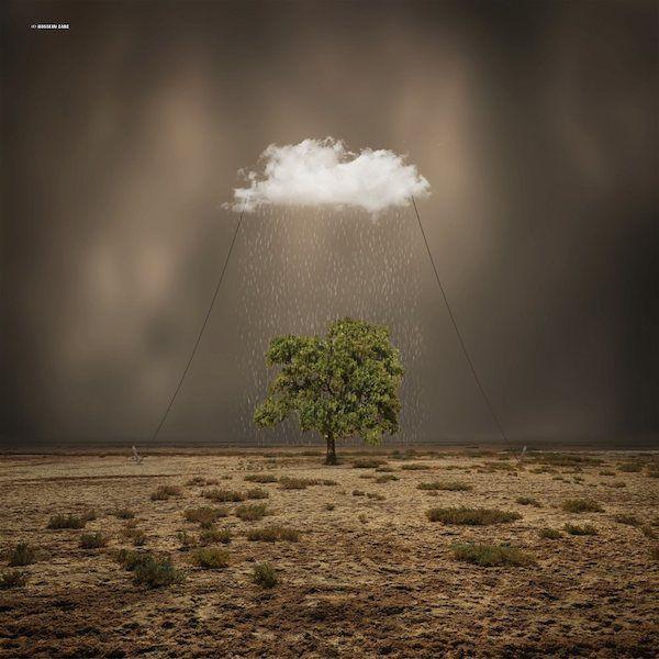 hossein zare arbre