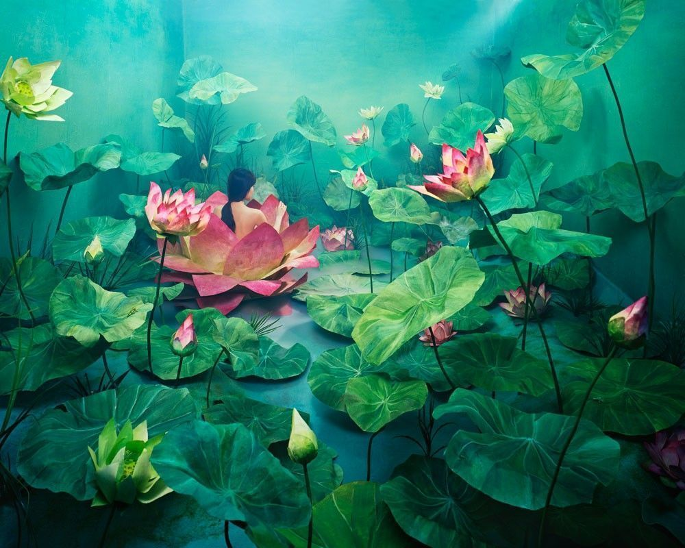 jee young lee nenuphar