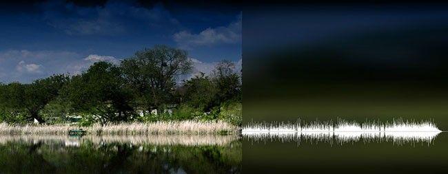 artiste-nature-sound-green