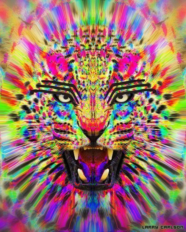 larry-carlson-The-Master-Jaguar