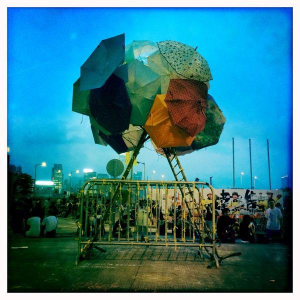 parapluie arbre